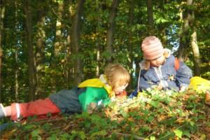 Flora und Fauna erforschen